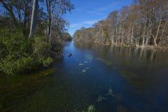 蓝色fe连接点公园河圣诞老人春天 库存照片