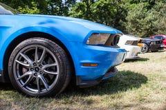 蓝色Ford Mustang的前面的侧视图 免版税库存照片