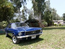 蓝色Ford Mustang V289在一个利马展示eshibited 图库摄影