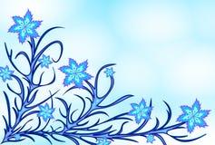 蓝色lilyes 免版税库存照片