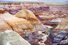 蓝色Mesa荒地的惊人的镶边紫色砂岩形成在化石森林国家公园 免版税库存照片