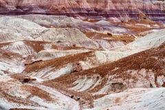 蓝色Mesa荒地的镶边紫色砂岩形成在化石森林国家公园 免版税库存图片