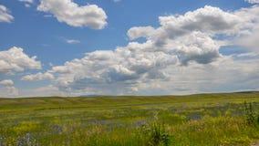 蓝色prarie的天空 图库摄影