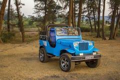 蓝色SUV敞篷车在干草站立反对绿色森林背景  库存照片
