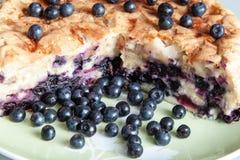 蓝草莓饼 图库摄影