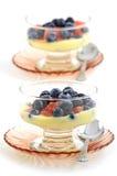 蓝莓、红色葡萄柚和柠檬酸奶 库存照片
