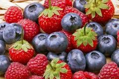 蓝莓、莓和草莓特写镜头 免版税库存图片