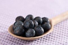 蓝莓一匙 免版税库存图片
