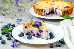 蓝莓乳酪蛋糕片断在板材的 免版税库存照片