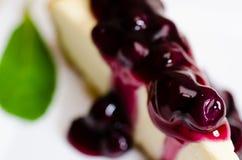 蓝莓乳酪蛋糕特写镜头 免版税库存照片