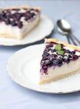 蓝莓乳酪蛋糕 库存图片