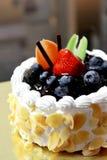 蓝莓乳酪蛋糕 免版税图库摄影