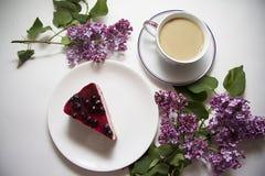 蓝莓乳酪蛋糕08 免版税图库摄影