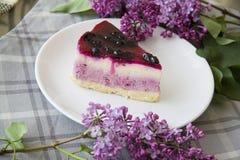 蓝莓乳酪蛋糕19 库存照片