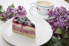 蓝莓乳酪蛋糕13 库存照片