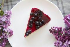 蓝莓乳酪蛋糕14 库存照片