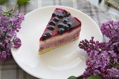 蓝莓乳酪蛋糕16 免版税图库摄影