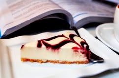 蓝莓乳酪蛋糕 图库摄影