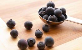 蓝莓健康快餐 免版税库存照片
