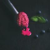 蓝莓冰淇凌熔化的瓢用新鲜薄荷离开 免版税图库摄影