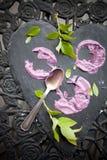 蓝莓冰淇凌蛋糕 免版税库存图片