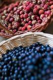 蓝莓和在篮子的野生浆果 免版税库存照片