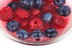 蓝莓和莓在被隔绝的碗  免版税库存图片