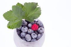 蓝莓和莓在玻璃与叶子 免版税库存图片