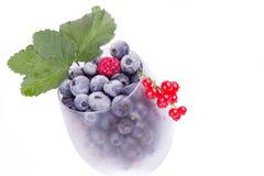 蓝莓和莓在玻璃与叶子 免版税库存照片