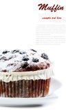 蓝莓和葡萄干松饼 免版税库存图片