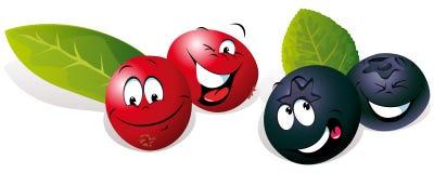 蓝莓和蔓越桔 免版税库存照片
