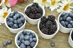 蓝莓和黑莓在土气木桌上的庭院雏菊 库存图片