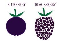 蓝莓和黑莓 图库摄影