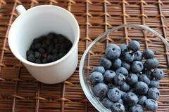 蓝莓和aronia 图库摄影