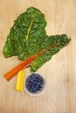 蓝莓唐莴苣和盘。 免版税库存照片