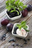 蓝莓在白色板材的冰淇凌 免版税库存图片