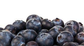 蓝莓堆 库存图片