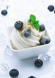 蓝莓奶油色乳脂状的新鲜的冰 免版税图库摄影