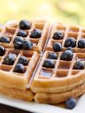 蓝莓奶蛋烘饼 库存照片