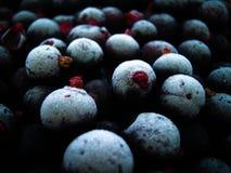 蓝莓好的背景喜欢样式 免版税库存图片