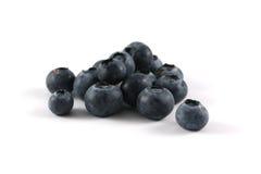 蓝莓工作室 免版税库存照片