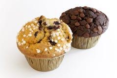 蓝莓巧克力松饼 库存图片