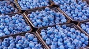 蓝莓待售 图库摄影