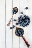 蓝莓或越桔在一张白色木桌上 库存图片