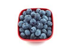 蓝莓断送红色 库存图片