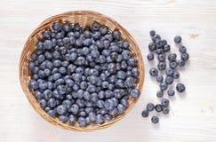 蓝莓新收获  免版税库存图片