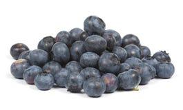 蓝莓新查出的白色 库存图片