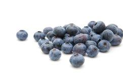 蓝莓新鲜成熟 库存照片