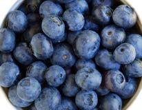 蓝莓新鲜有机 库存照片