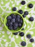 蓝莓新鲜现代 免版税库存图片